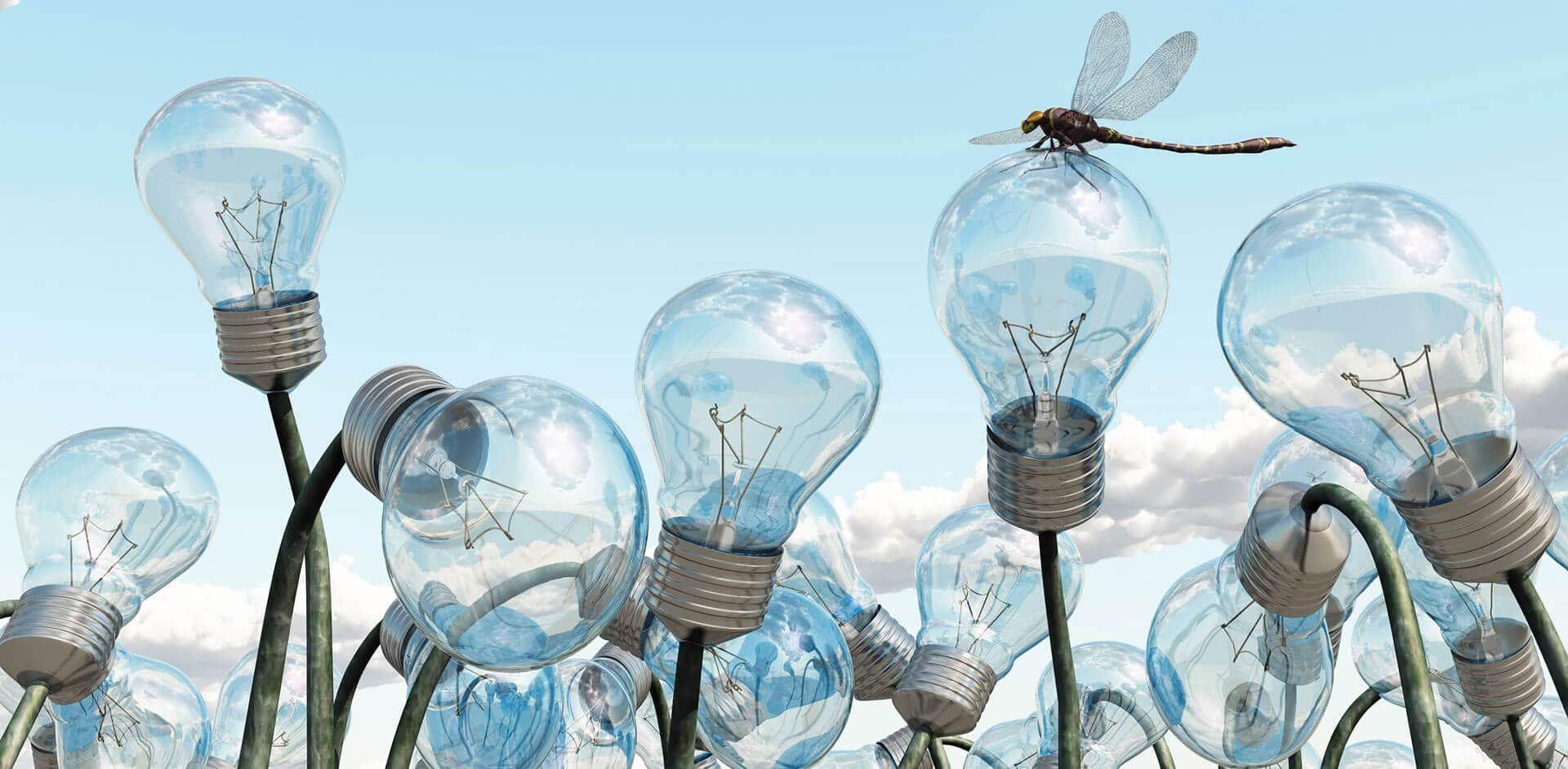 web-d-vision-bulbs